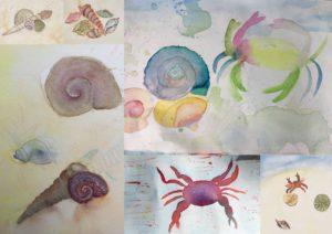 Muscheln und Krebse Rubbelkreb und Wachs in der Aquarellmalerei